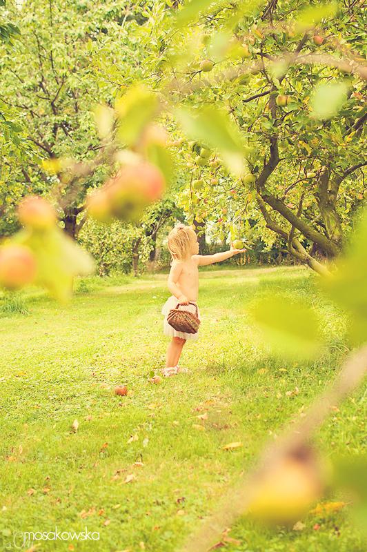 Dziecko w sadzie, Świdnica, dolny śląsk