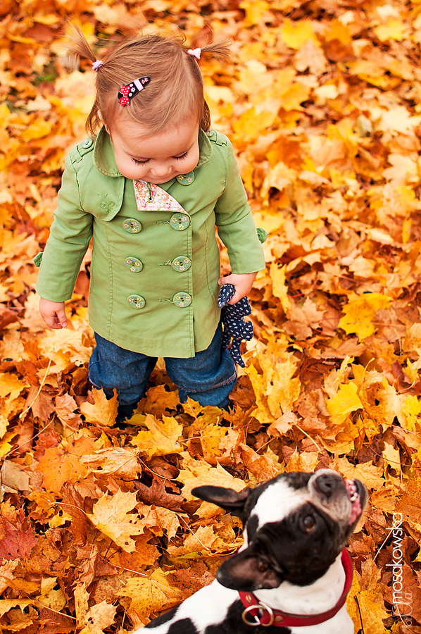 fotografia psa i dziecka