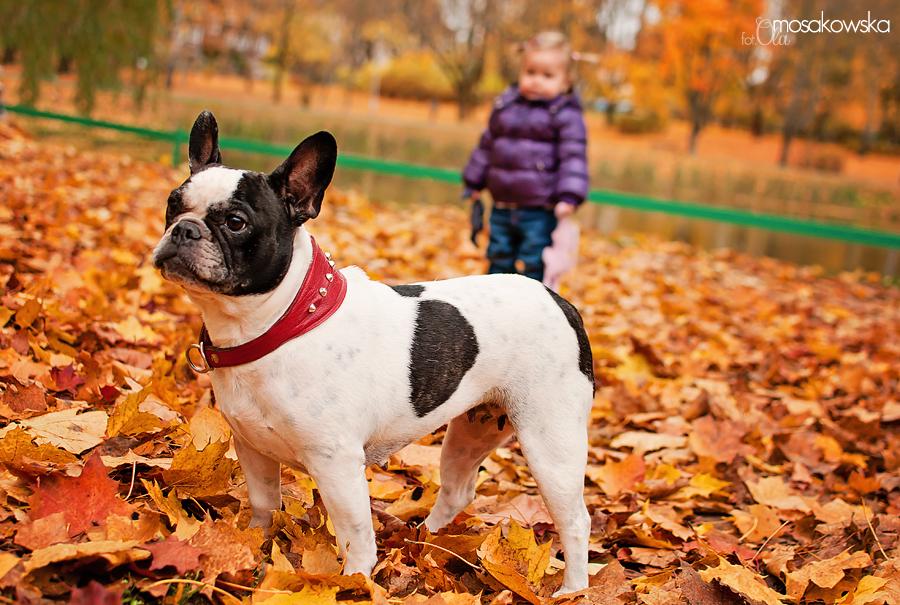 zdjęcie dziecka z psem