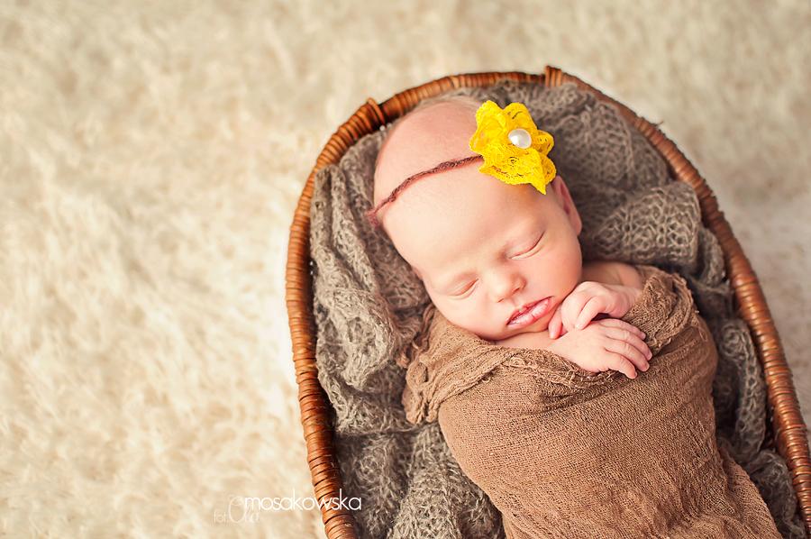 sesja fotograficzna noworodka